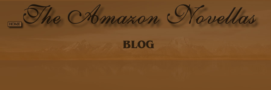 The Amazon Novellas - Blog
